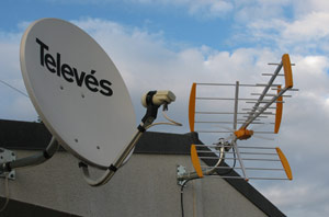 Instalación de antenas para comunidades por ELRE
