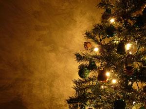 Iluminación navideña Elre - 3
